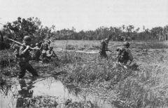 战斗在莱特岛,消灭日军王牌第一师团,外加南京大屠杀元凶之一16师团.jpg